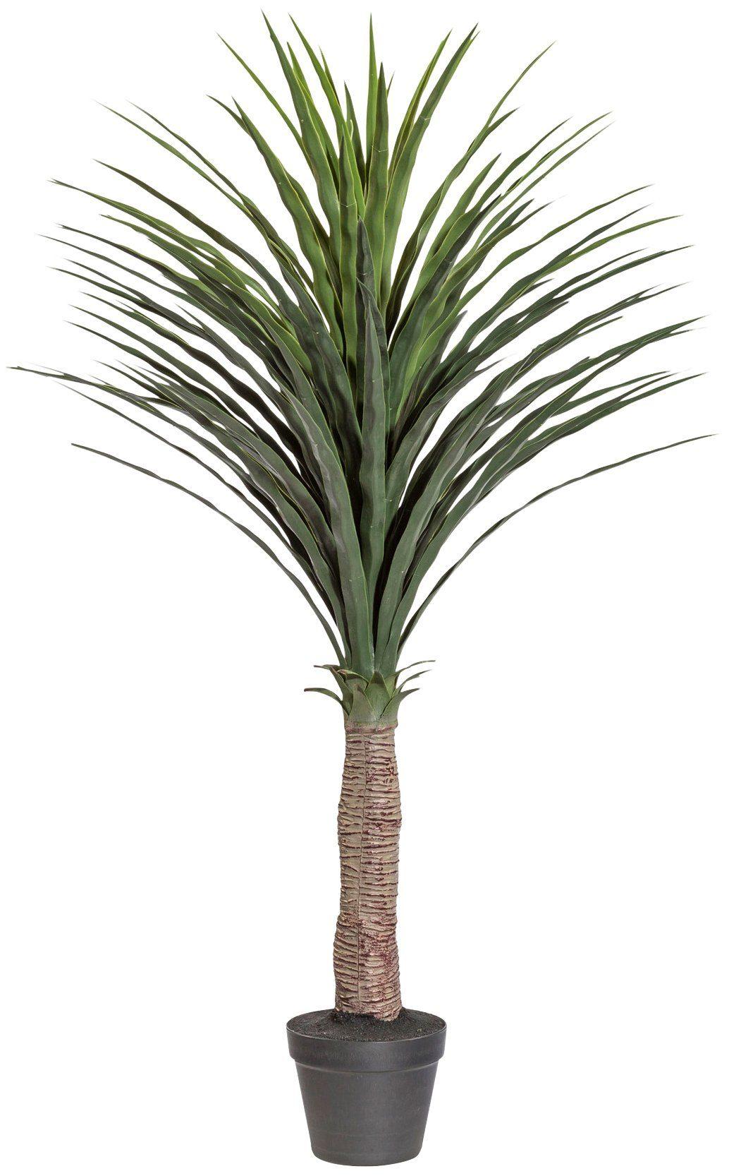 Kunstpflanze »Palme Yucca«, im Kunststofftopf, H: 145 cm