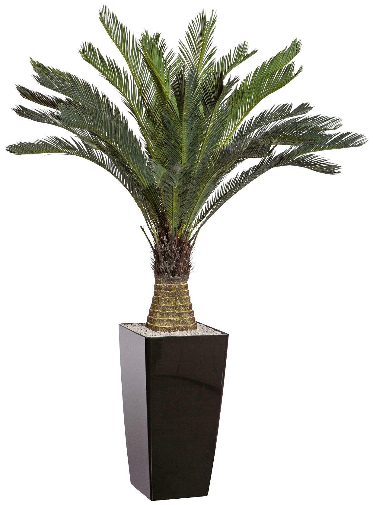 Kunstpflanze »Cycaspalme«, im Kunststofftopf, H: 130 cm
