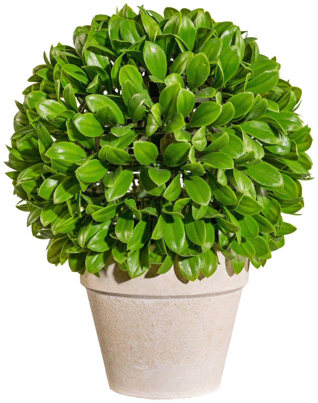 Kunstpflanze »Blattbusch Kugel«, im Papiertopf, Höhe 32 cm