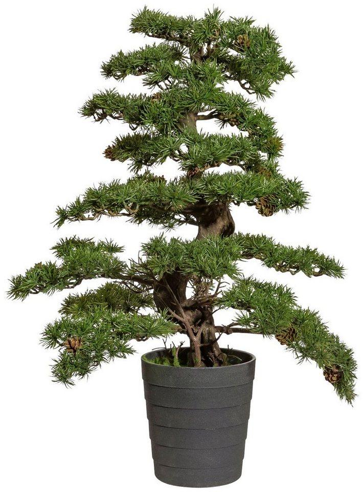 kunstpflanze bonsai kiefer mit zapfen im kunststofftopf h 100 cm online kaufen otto. Black Bedroom Furniture Sets. Home Design Ideas