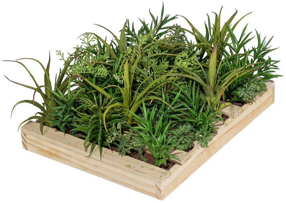 kunstpflanze sukkulenten arrangement im holzkasten. Black Bedroom Furniture Sets. Home Design Ideas
