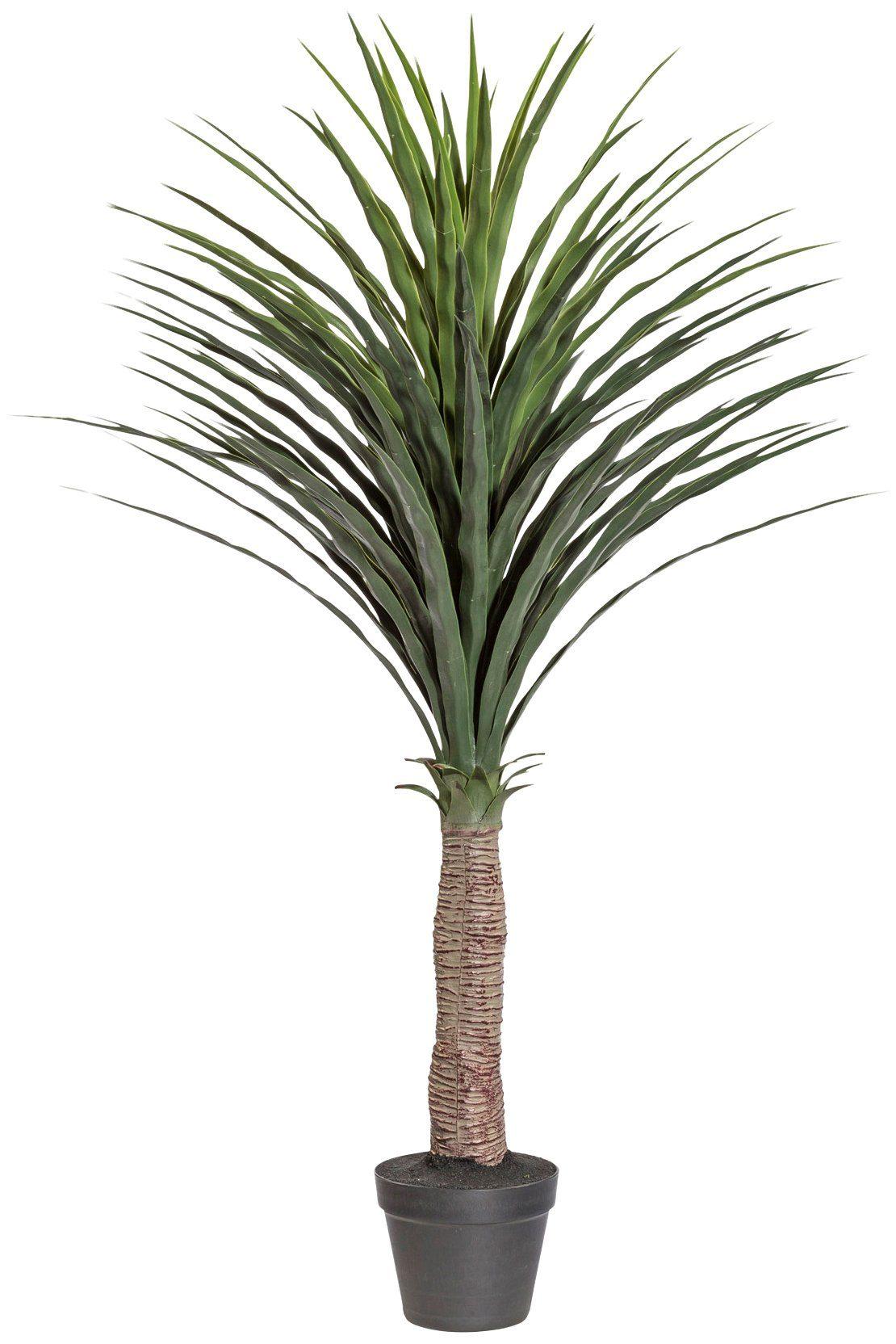 Kunstpflanze »Palme Yucca«, im Kunststofftopf, H: 115 cm