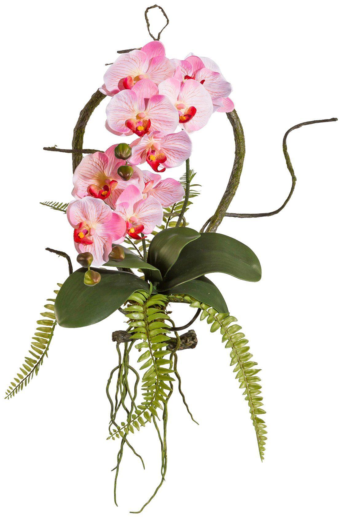 Kunstpflanze »Wandhänger Phalaenopsis«, Höhe 40 cm, rosa
