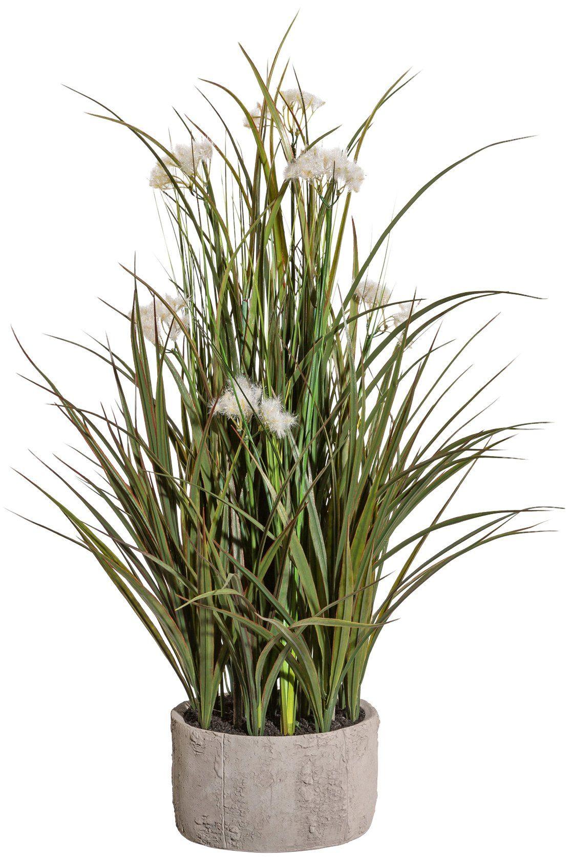 Kunstpflanze »Miscanthusgras mit Pusteblumen«, in Zementschale, Höhe 75 cm, weiß