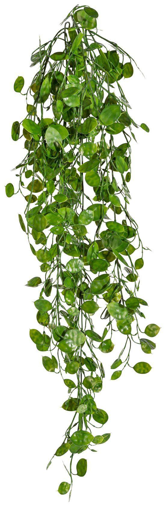 Kunstpflanze »Pfennigblatt-Hänger«, Höhe 88 cm