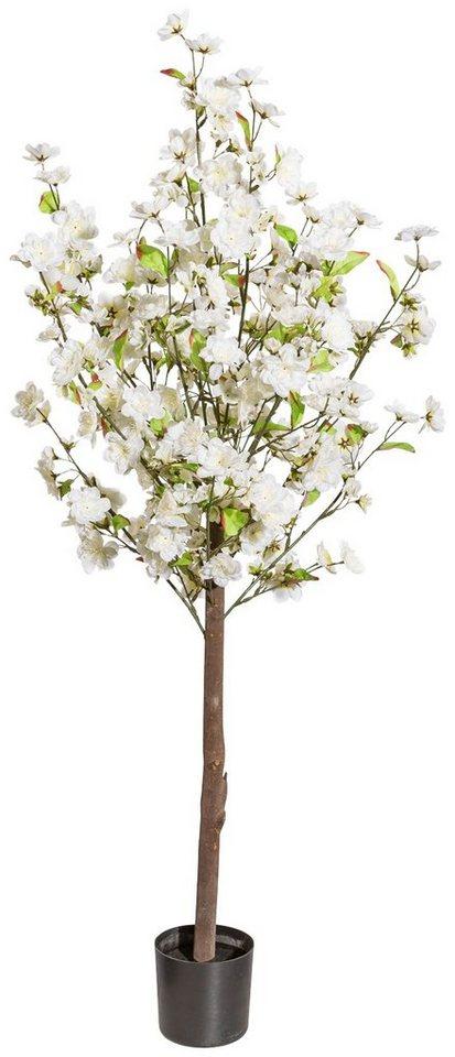 kunstpflanze pfirsichbl tenbaum im kunststofftopf h. Black Bedroom Furniture Sets. Home Design Ideas