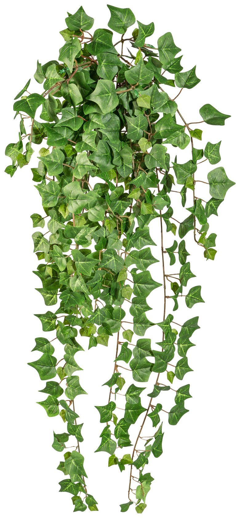 Kunstpflanze »Englische Efeuranke «, Höhe 90 cm