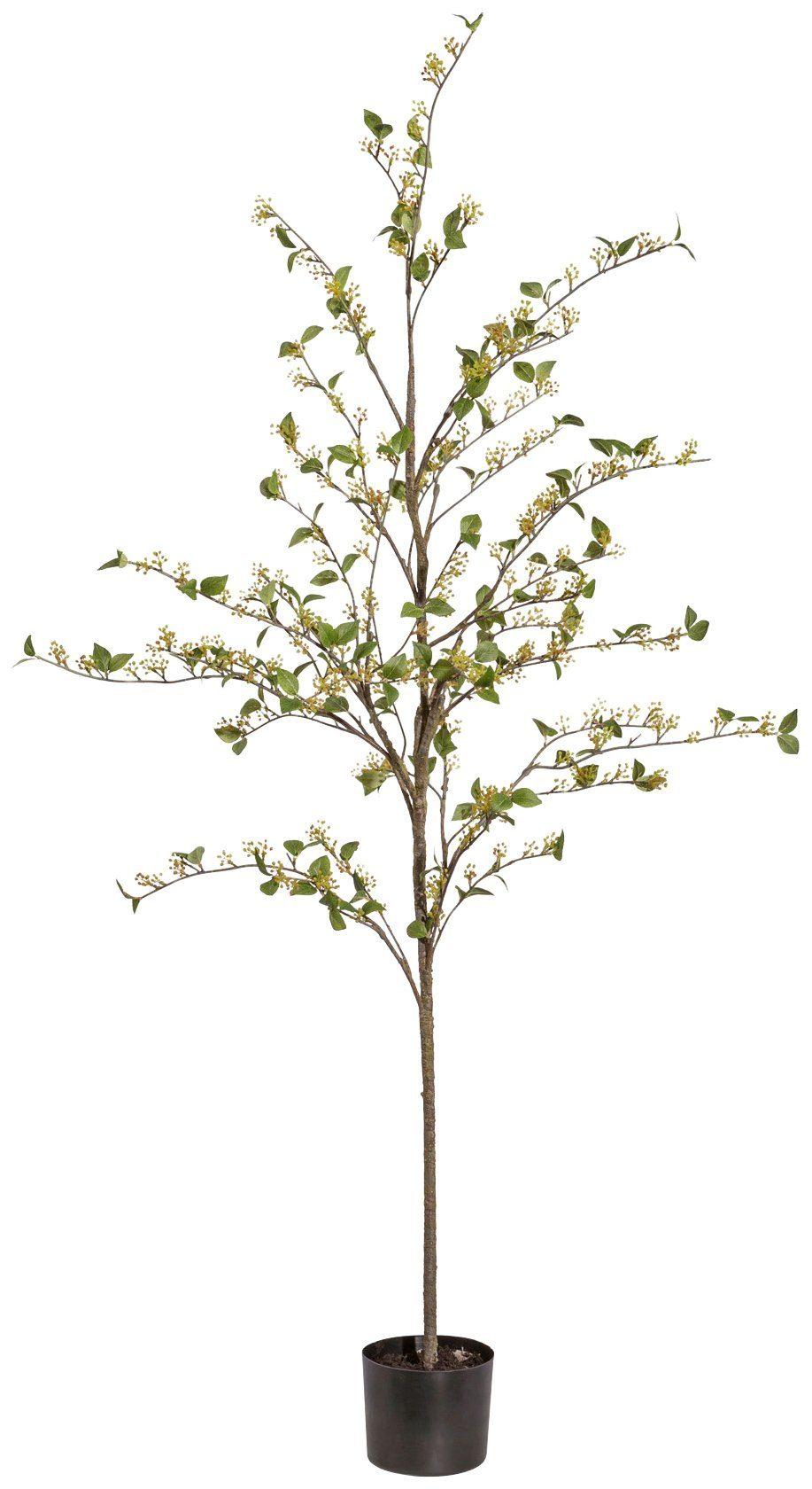 Kunstpflanze »Viburnum«, im Kunststofftopf, H: 180 cm