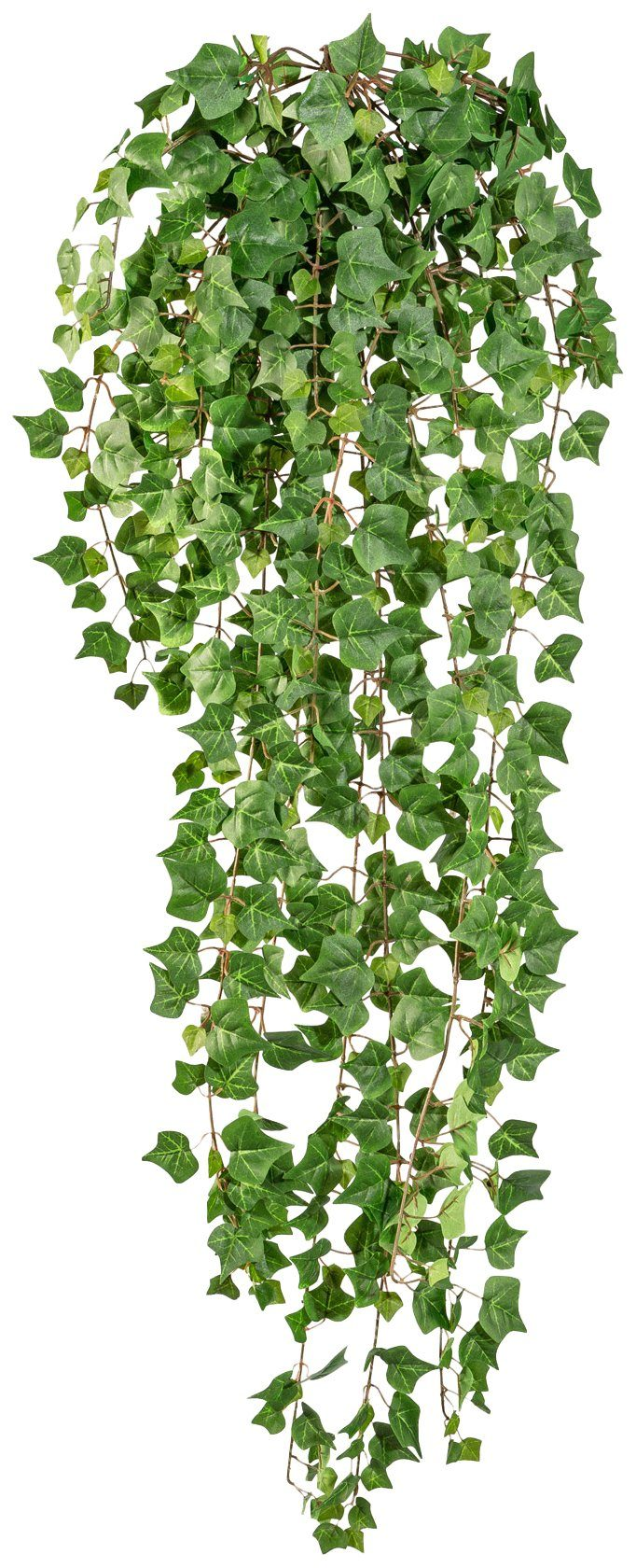 Kunstpflanze »Englische Efeuranke «, Höhe 115 cm