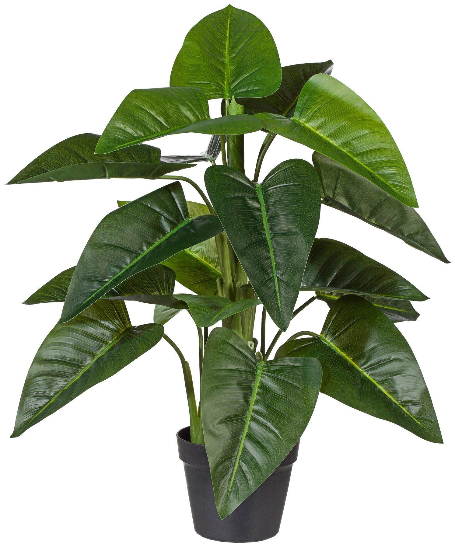 Kunstpflanze »Philodendron«, im Kunststofftopf, H: 75 cm