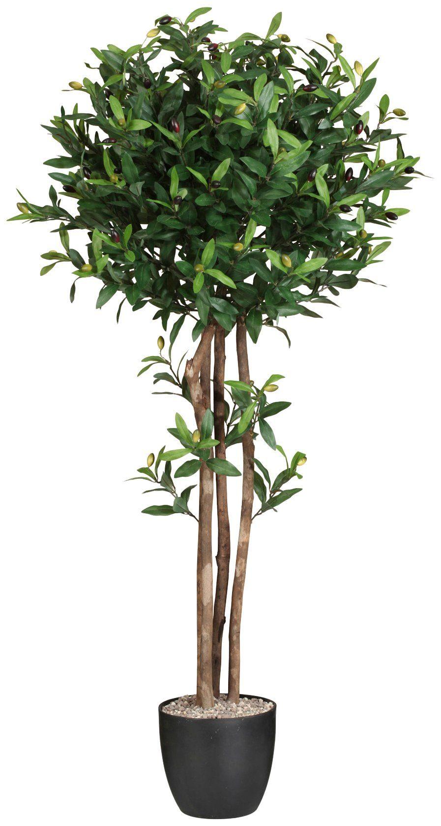 Kunstpflanze »Olivenkugelbaum«, im Kunststofftopf, H: 120 cm