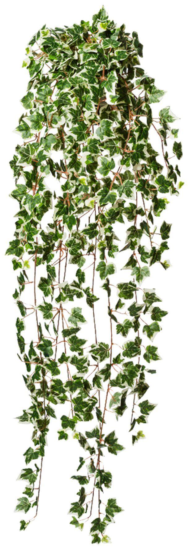 Kunstpflanze »Holländische Efeuranke«, Höhe 115 cm