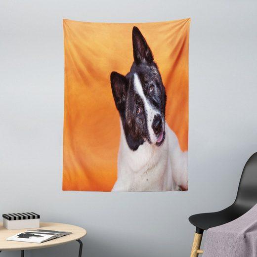 Wandteppich »aus Weiches Mikrofaser Stoff Für das Wohn und Schlafzimmer«, Abakuhaus, rechteckig, Orange und Schwarz Akita on Orange