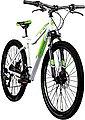 Galano Mountainbike »GX«, 21 Gang Shimano TX Schaltwerk, Kettenschaltung, Bild 2