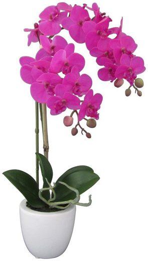 Kunstpflanze »Orchidee Phalaenopsis«, im Keramiktopf, Höhe 43 cm, lila
