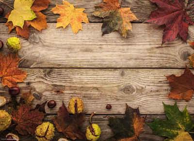 Platzset, »Tischsets I Platzsets - Herbstdeko - Ahornblätter mit Kastanien - 12 Stück aus hochwertigem Papier 44 x 32 cm«, Tischsetmacher, (12-St)
