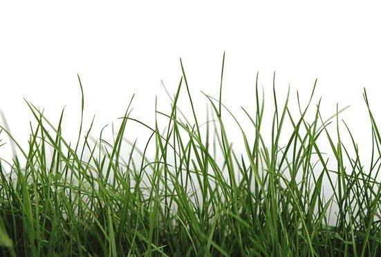Architects Paper Fototapete »Green Grass«, (Set, 4 St), Grasnarbe, Vlies, glatt