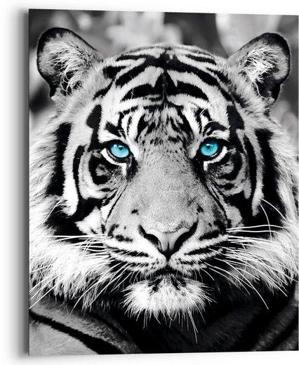 Reinders! Holzbild »Blue Eyed Tiger«, (1 Stück)