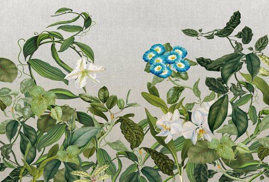 Architects Paper Fototapete »Atelier 47 Botanic Sketch 1«, glatt, floral, (4 St)