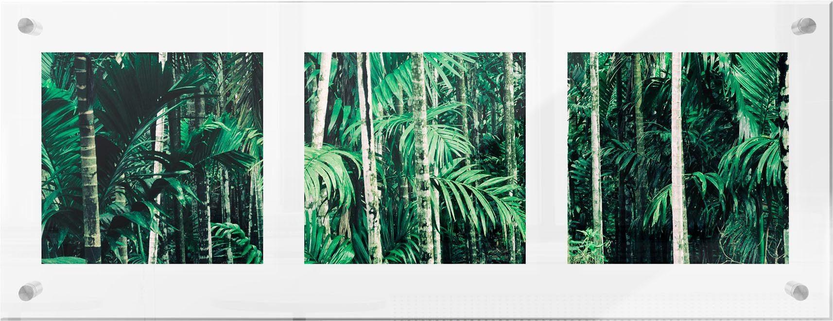 Premium collection by Home affaire Acrylglasbild »Im Dschungel«, 78/28 cm