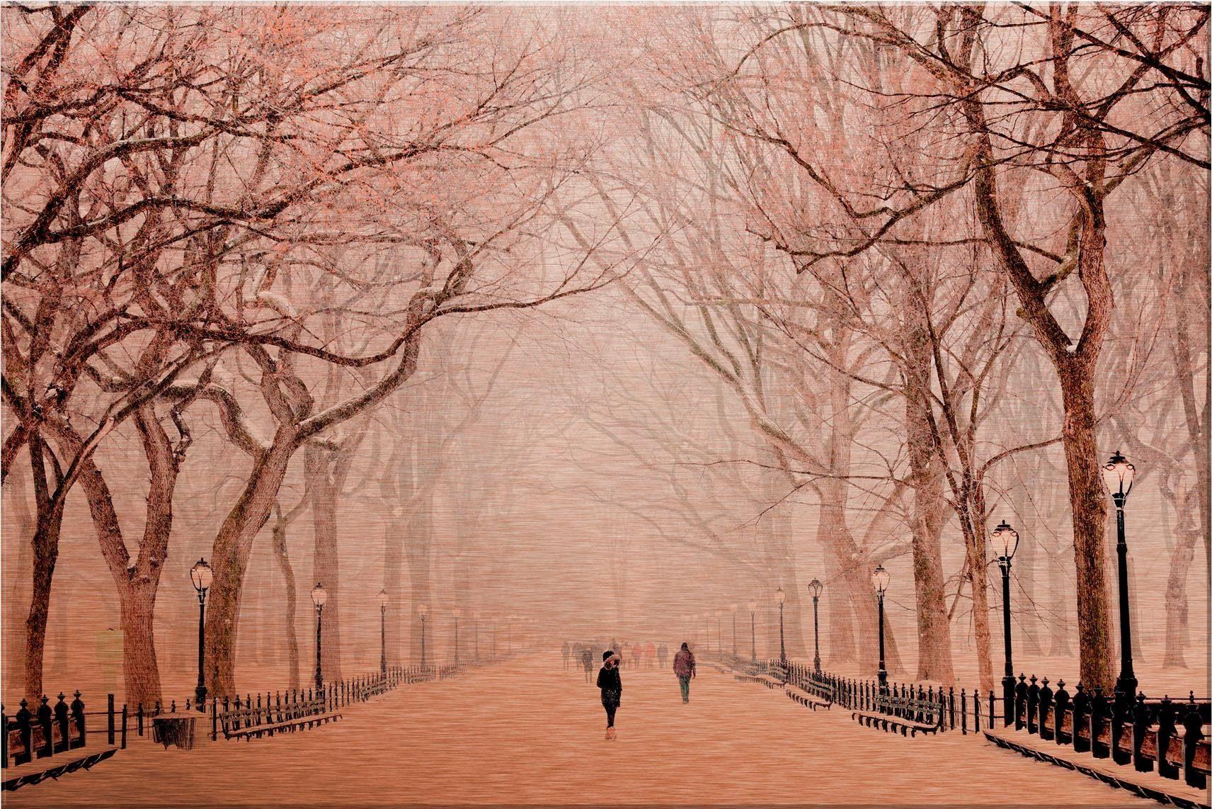 Alu-Dibond-Kupfereffekt »Winter im Central Park«, 60/40 cm
