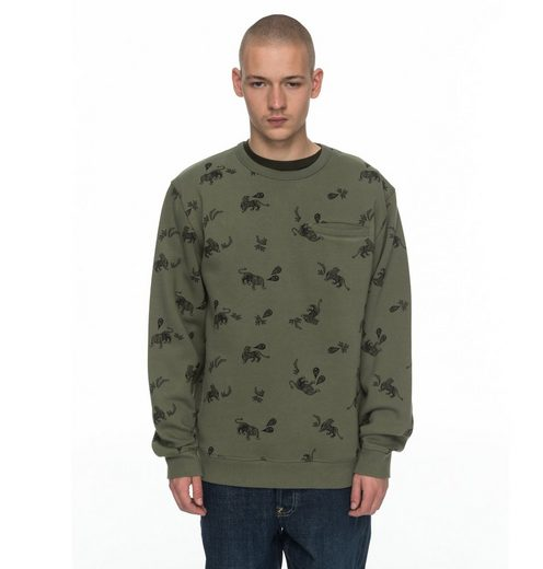DC Shoes Sweatshirt Ranstead