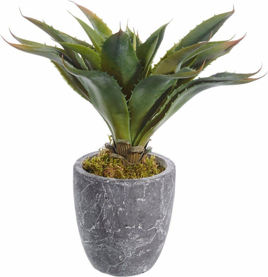 home affaire kunstpflanze kaktus online kaufen otto. Black Bedroom Furniture Sets. Home Design Ideas