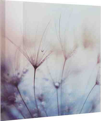 EUROGRAPHICS Glasbild »Teardrops«, 50/50 cm