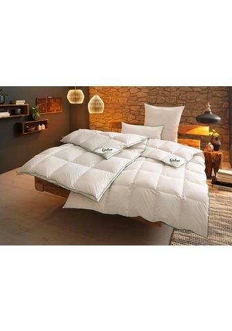 FJÖDUR Одеяло + подушка »Fee« fj&...