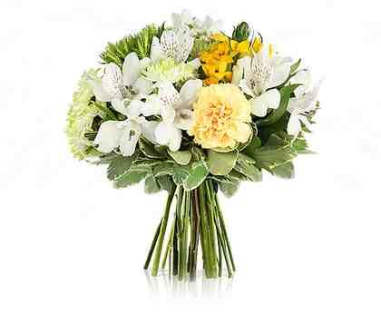 MIFLORA Blumenstrauß mit gelben Rosen »Walk of Fame«