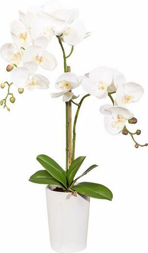 Kunstorchidee »Orchidee mit 3D Print«