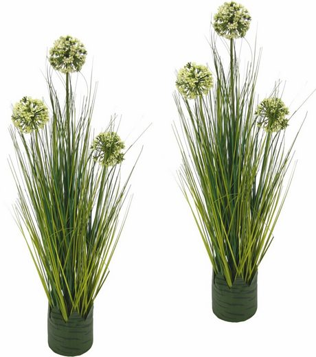 Kunstpflanze »Grasbusch Allium 62 cm«« (Set, 2 Stück)