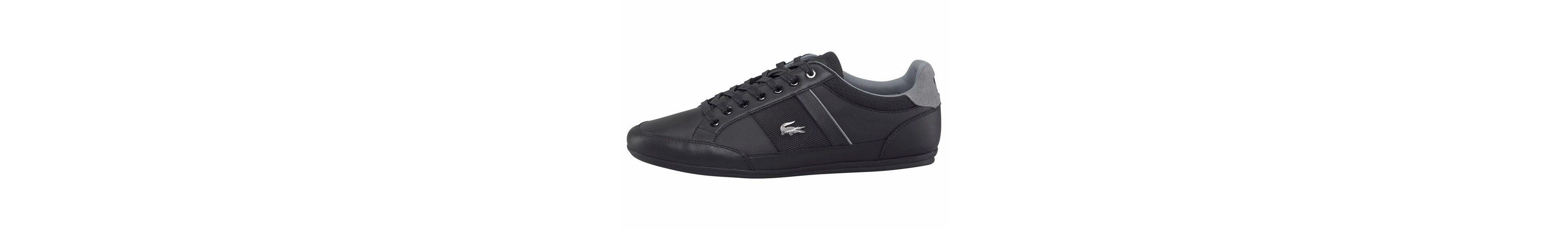 Verkauf Amazon Lacoste Chaymon 317 2 CAM Sneaker Limitierte Auflage Online-Verkauf MJFJ5M