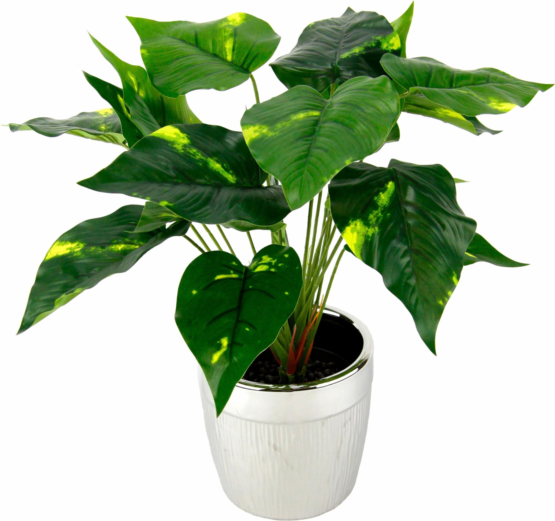 Kunstpflanze »Pothospflanze im Topf«