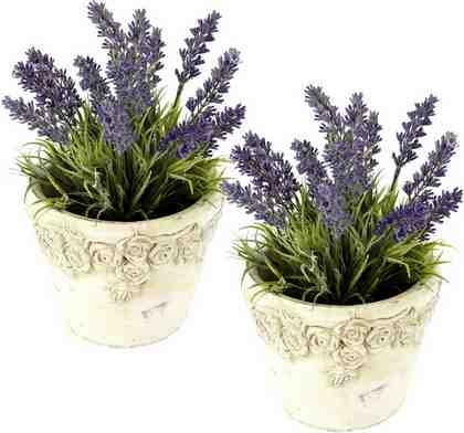 Kunstpflanze »Lavendel in Keramiktopf« (2er Set)