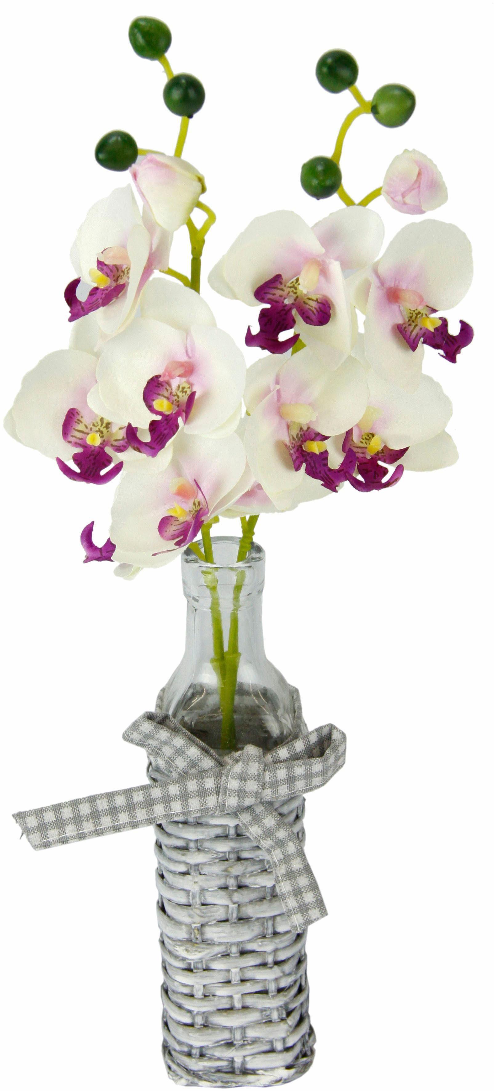Kunstpflanze »Orchideen in Weideglasvase«