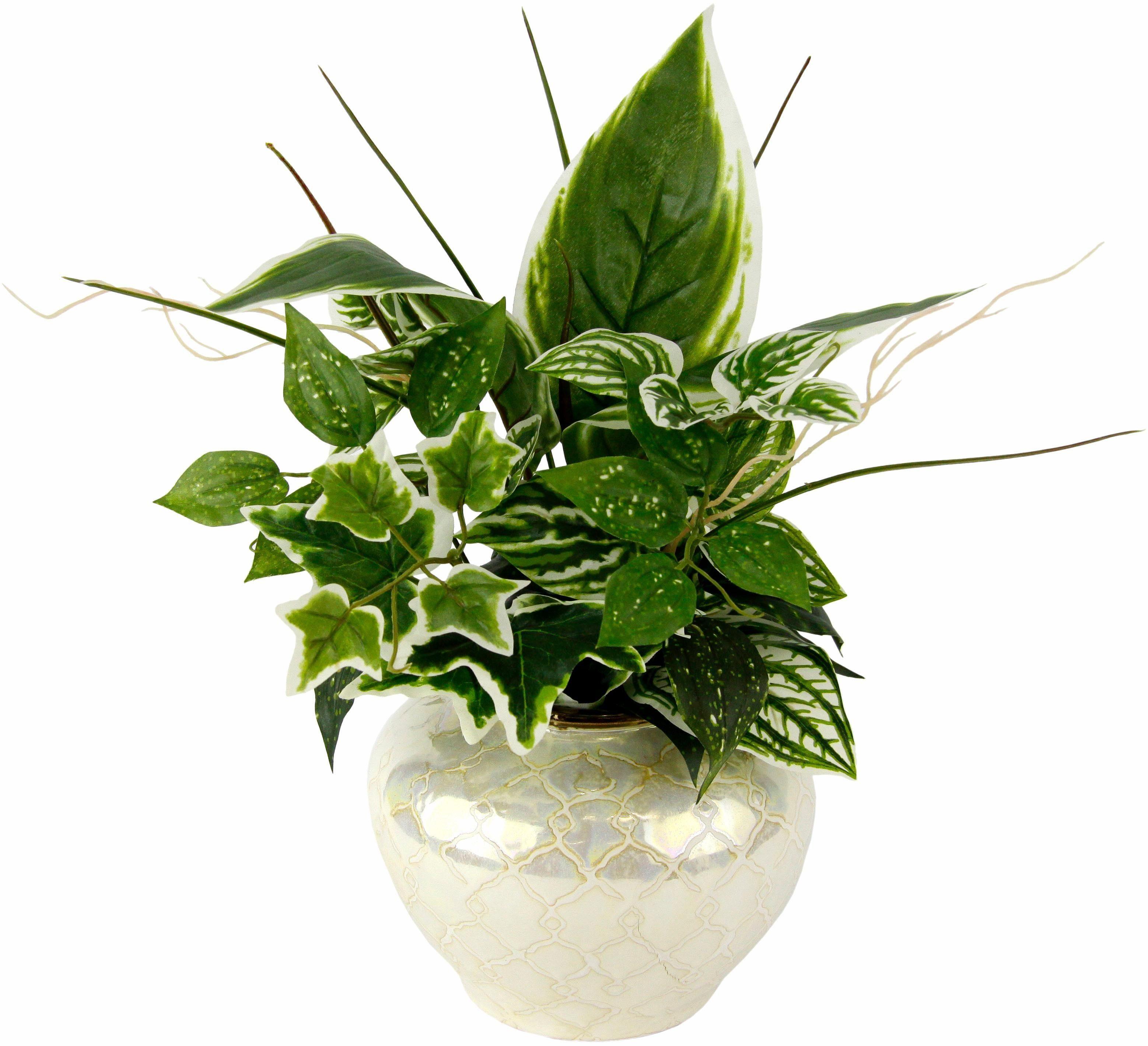 Kunstpflanze »Mixed-Hostabusch in Vase«
