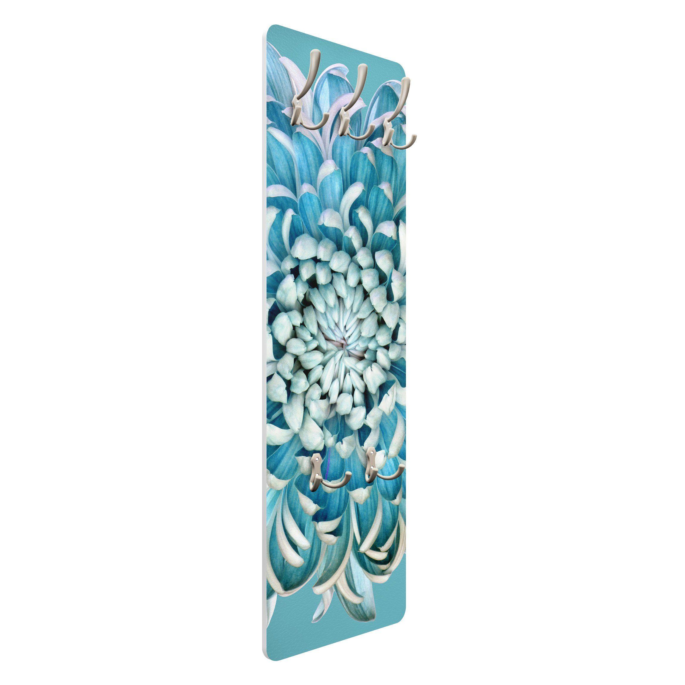 Bilderwelten Wandgarderobe »Blaue Chrysantheme«