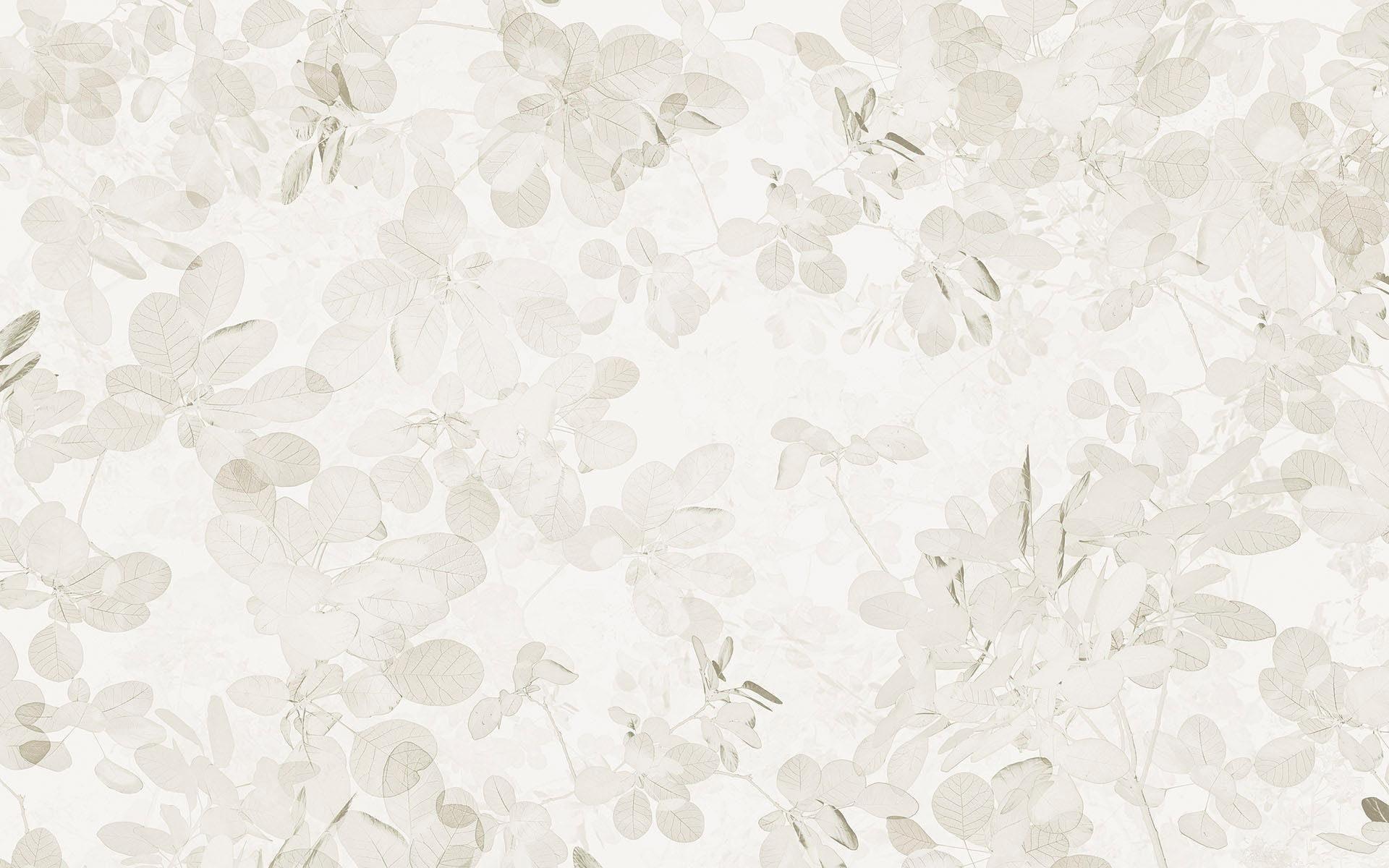 Komar Vlies Fototapete »Sheer Grey« 400/250 cm