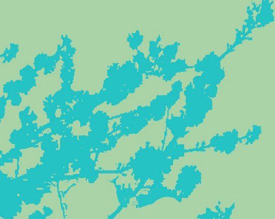 Fototapete »Zweige hellgrün«, mehrfarbig, FSC®