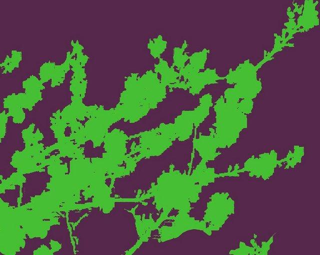 Fototapete Rasch  Zweige grün bunt,mehrfarbig | 04000441890020