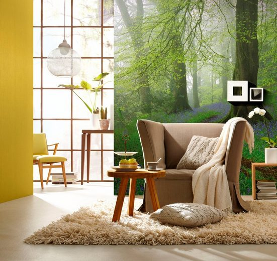 Fototapete »Wald«, mehrfarbig, FSC®