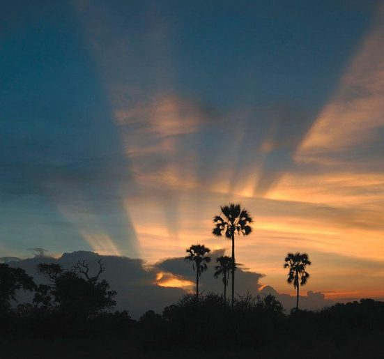Fototapete »Sonnenuntergang«, mehrfarbig, FSC®