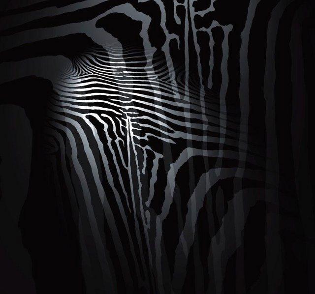 Fototapete Rasch  Zebra bunt,mehrfarbig | 04000441847604