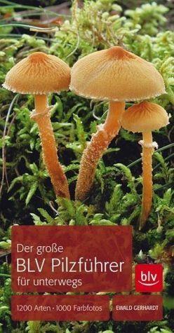 Broschiertes Buch »Der große BLV Pilzführer für unterwegs«