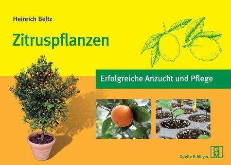 Broschiertes Buch »Zitruspflanzen«