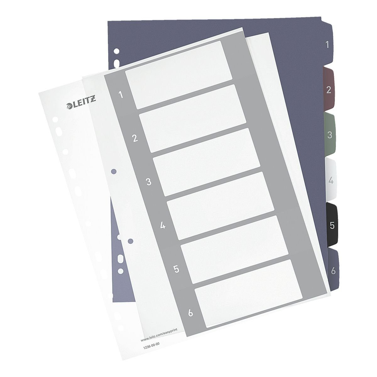 Leitz PC-beschriftbares Register , Zahlen 1-6 »Style«