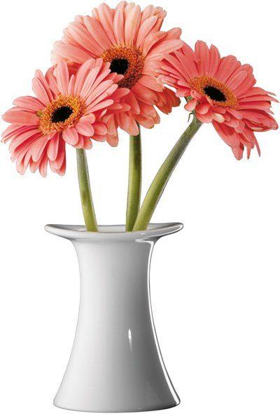 Seltmann Weiden Vase »Top Life Uni«