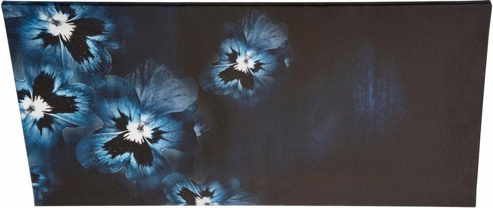 guido maria kretschmer home living leinwandbild viola flowers blumen gerahmt keilrahmen. Black Bedroom Furniture Sets. Home Design Ideas