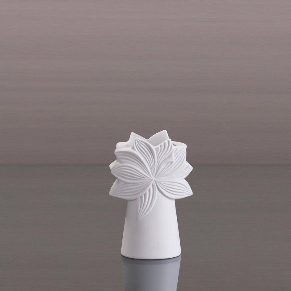 kaiser porzellan vase palmkrone online kaufen otto. Black Bedroom Furniture Sets. Home Design Ideas